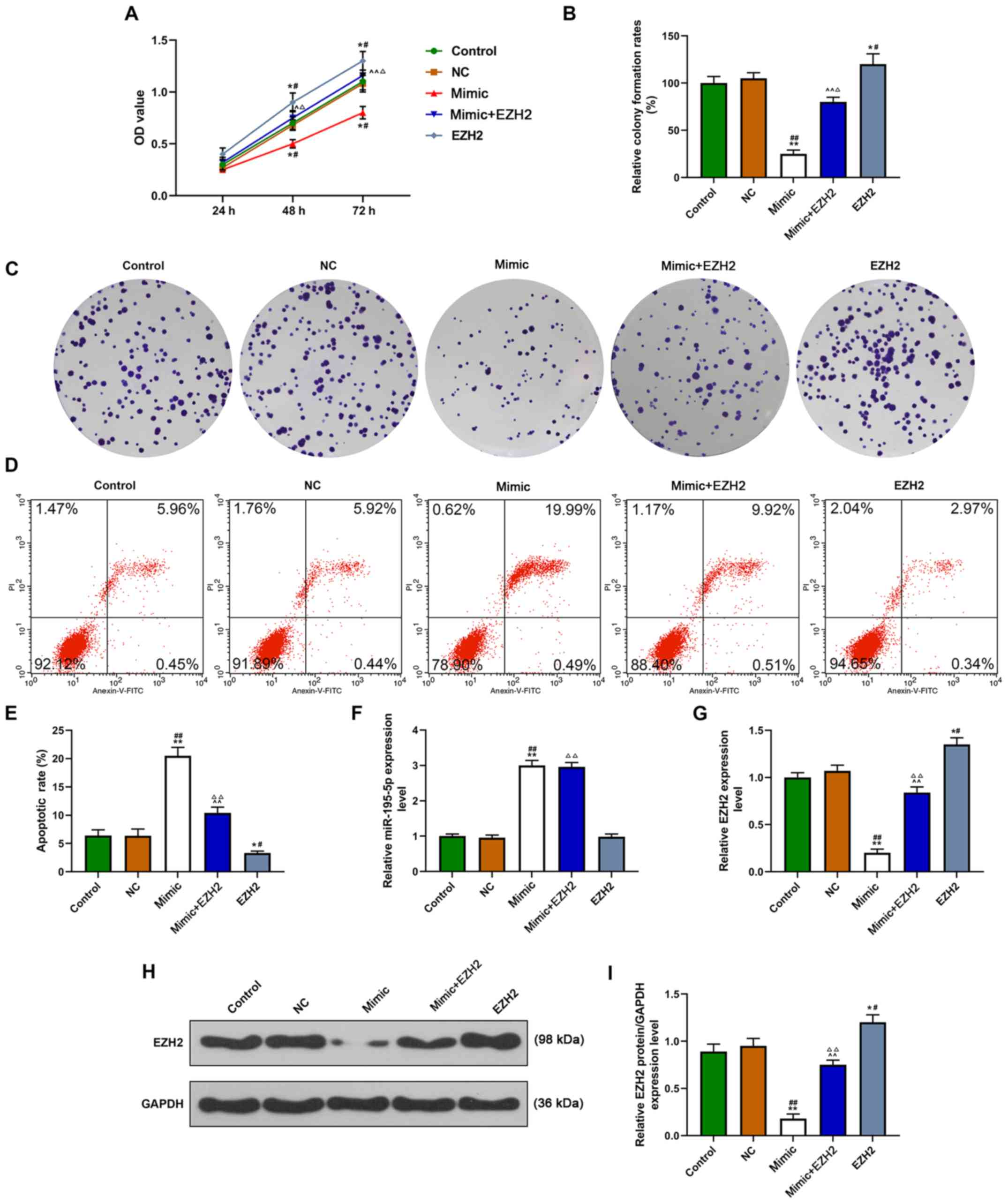 MiR-195-5p inhibition reversed the inhibitory effect of