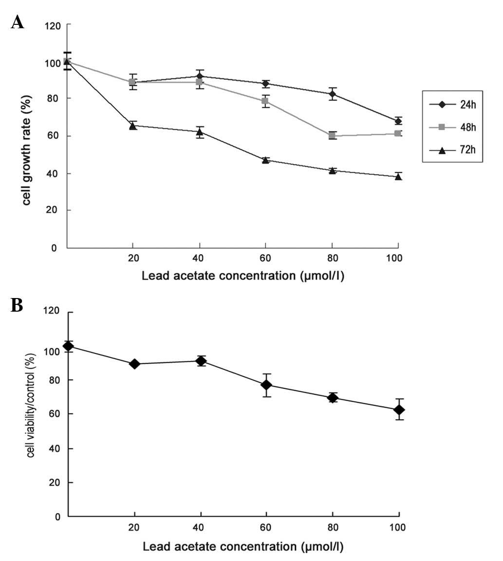 Clostridium difficile – Wikipédia - Toxin c nehéz