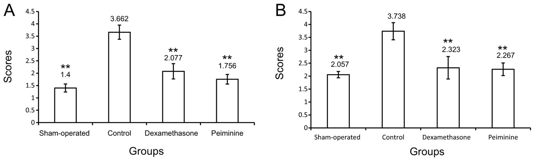 Peiminine ameliorates bleomycin-induced acute lung injury