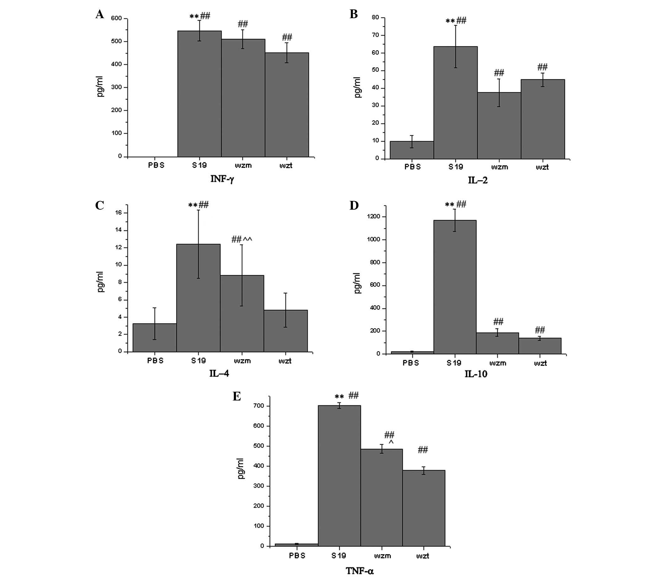 Immunogenic Response Induced By Wzm And Wzt Gene Deletion