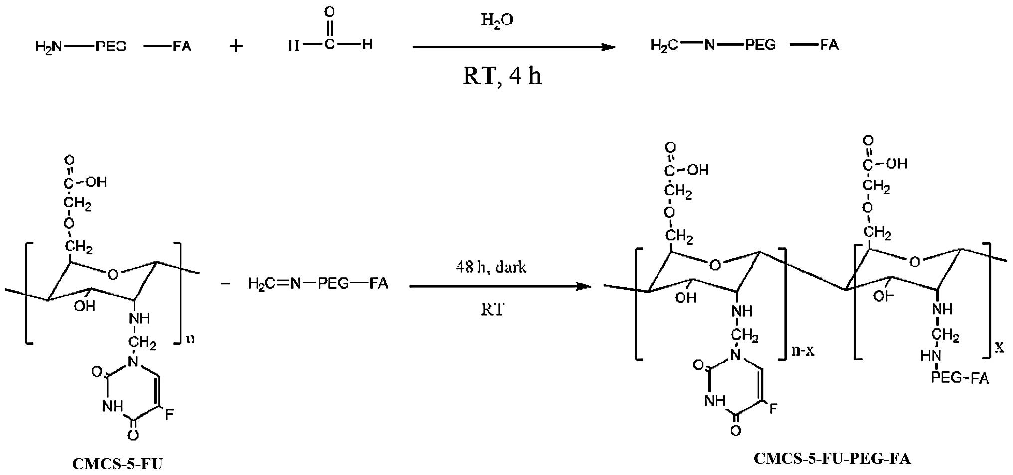 Folate‑polyethylene Glycol Conjugated Carboxymethyl