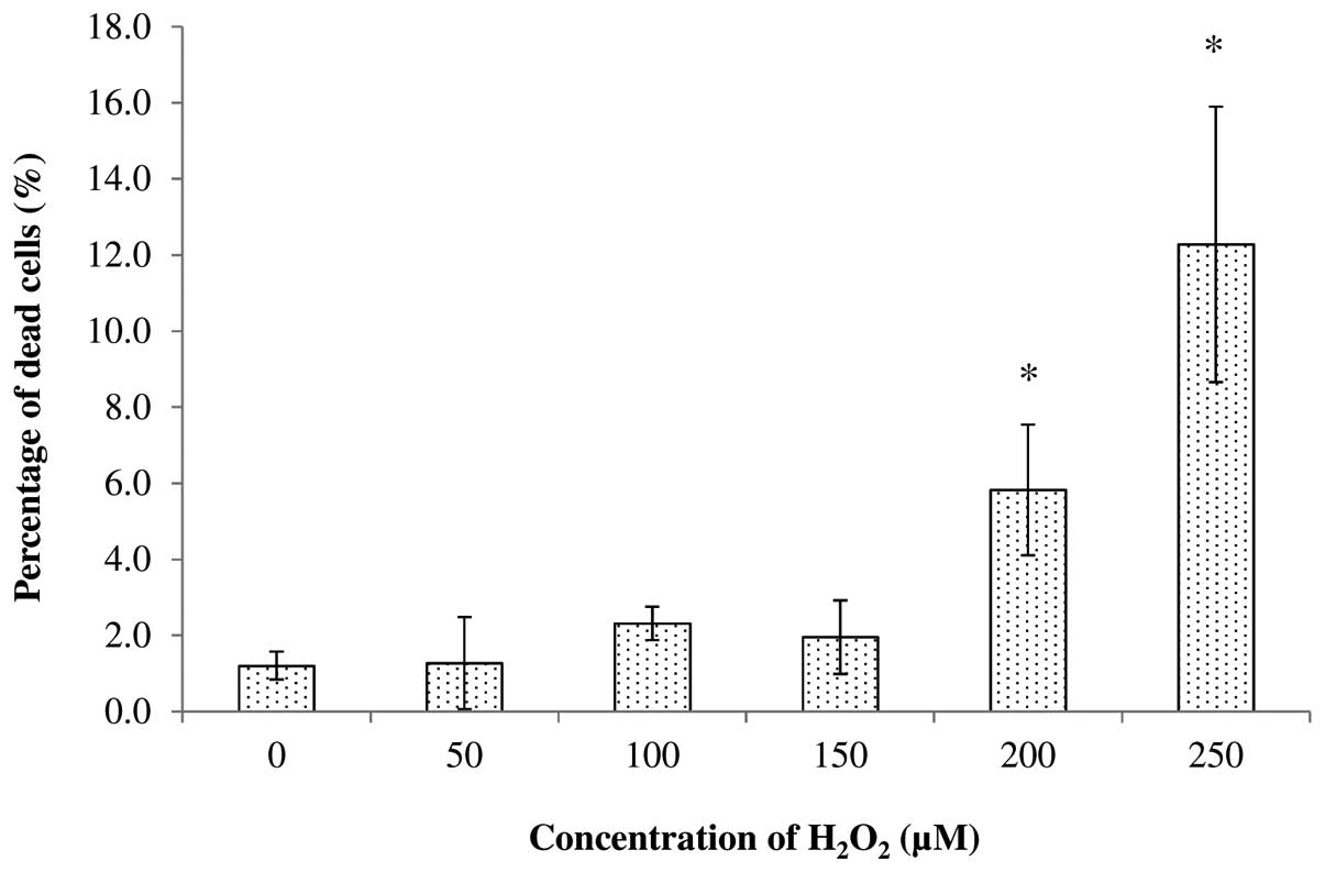 effect of temperature on hydrogen peroxide Experiment 2: effect of hydrogen peroxide on mycelium time of exposure for example, a 05% accelerated hydrogen per- growth oxide demonstrated bactericidal and virucidal activity experiment 1: effect of temperature on mycelial growth zero was changed to 001, which closely matched the.