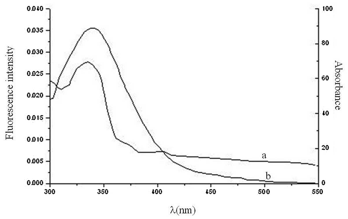 paracetamol anti inflammatoire non steroidien