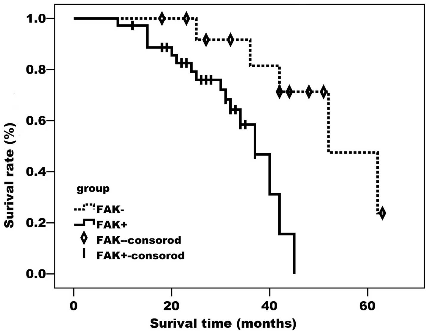 Expression and clinical significance of focal adhesion