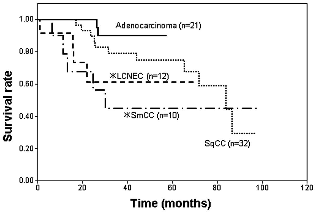 Survivin expression in lung cancer: Association with smoking