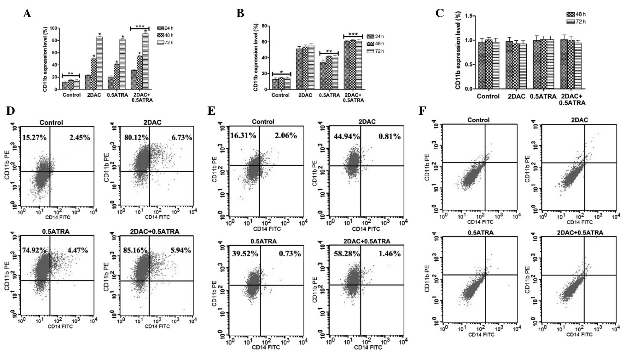 changes in expression of wt1 during induced