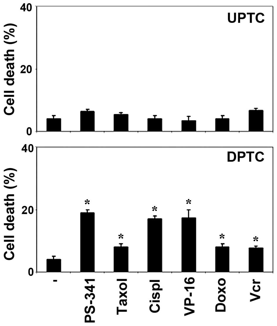 Resistance of papillary thyroid cancer stem cells to chemotherapy