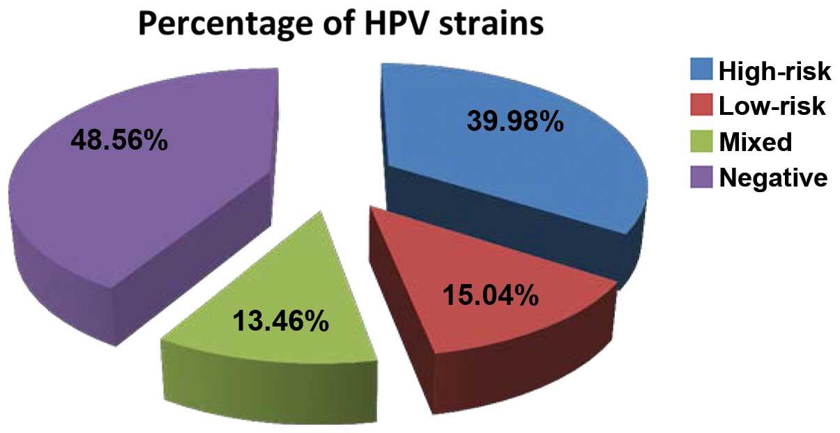 Hpv warts strains, Hpv strains meaning, Translation of