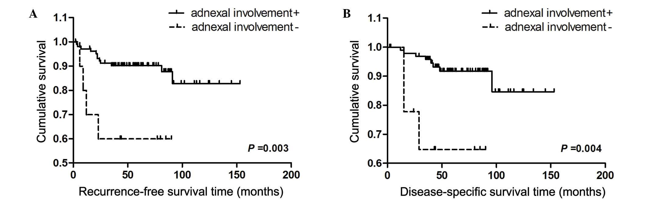 endometrial cancer survival rate)