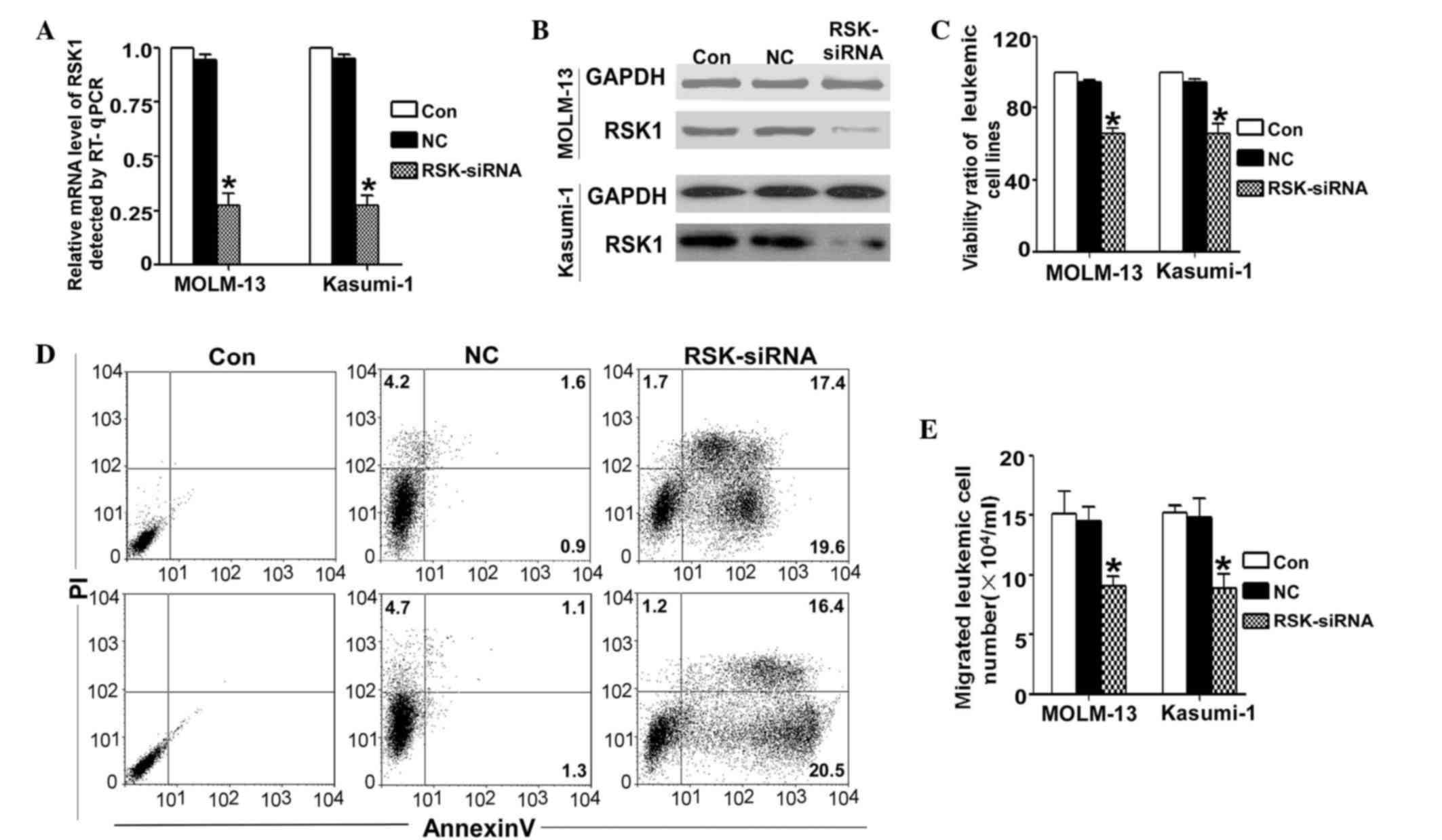 Luteolin a novel p90 ribosomal S6 kinase inhibitor suppresses
