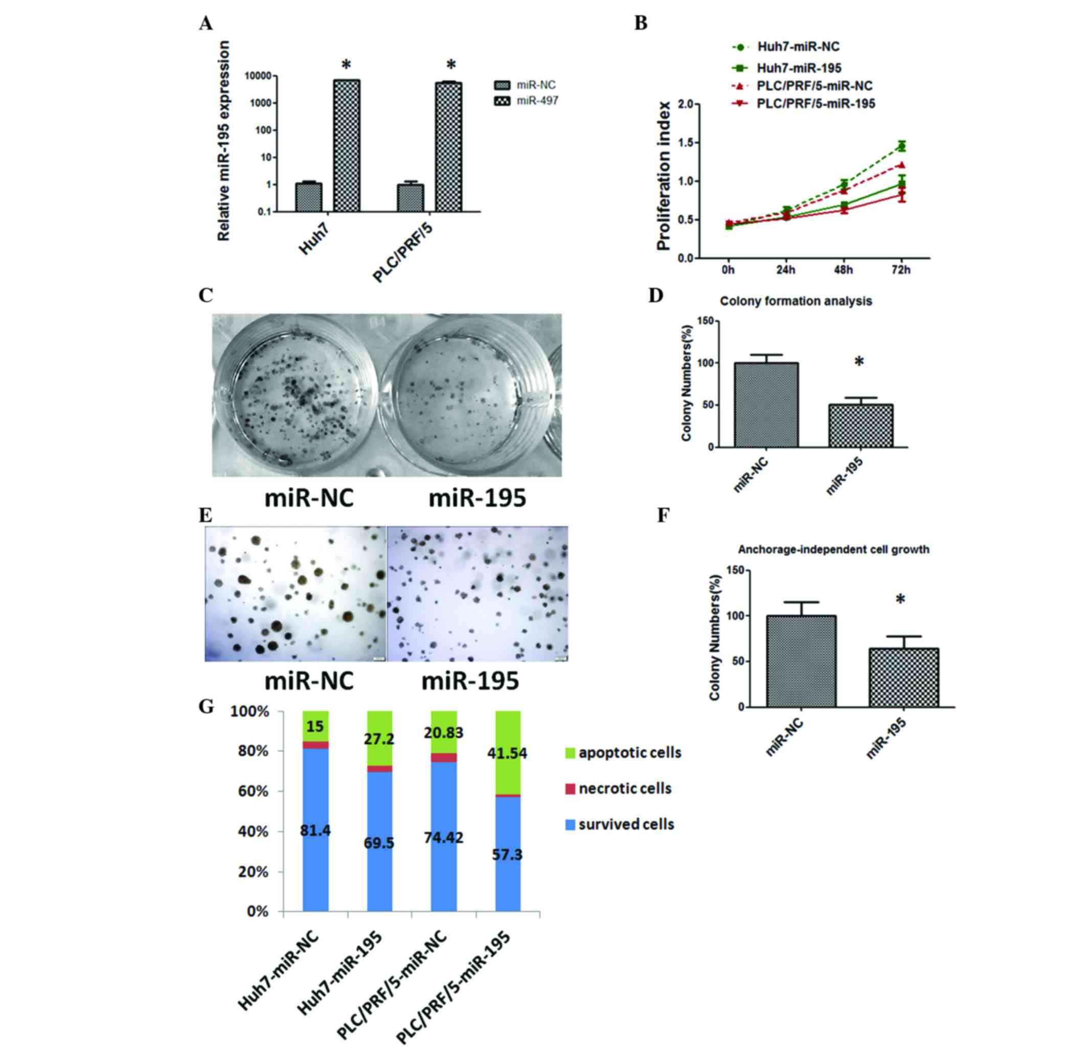 MiR-195 inhibits cell proliferation via targeting AEG-1 in