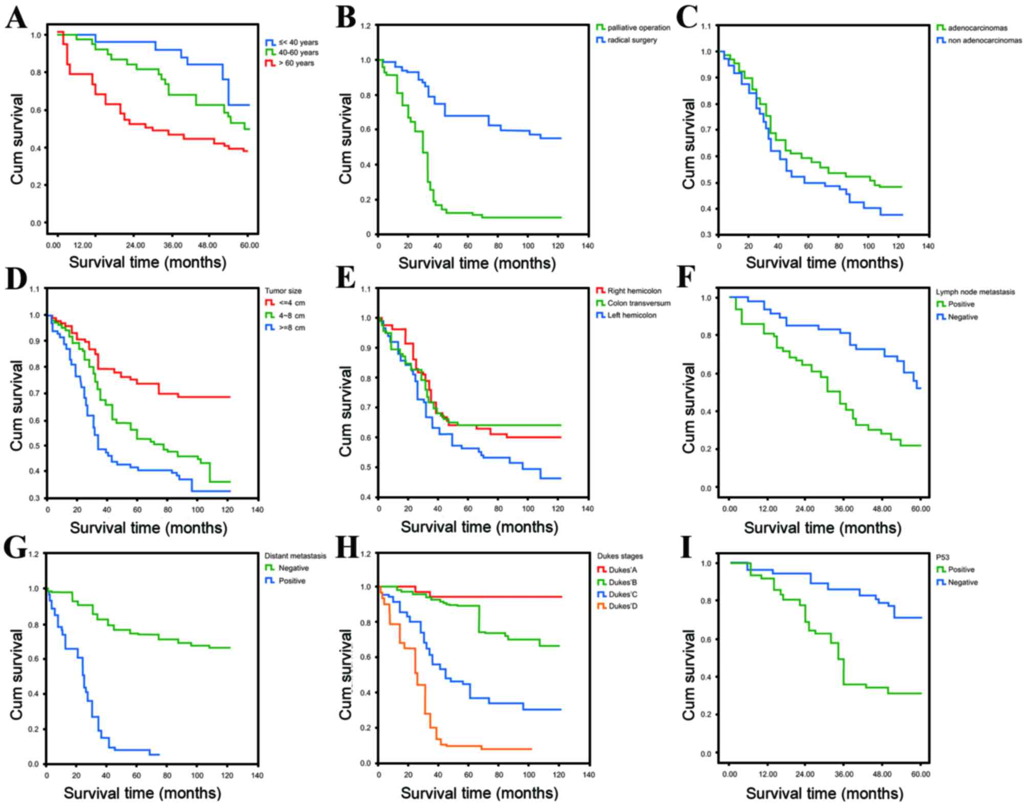 The Association Of P53 Expression Levels With Clinicopathological Features And Prognosis Of Patients With Colon Cancer Following Surgery