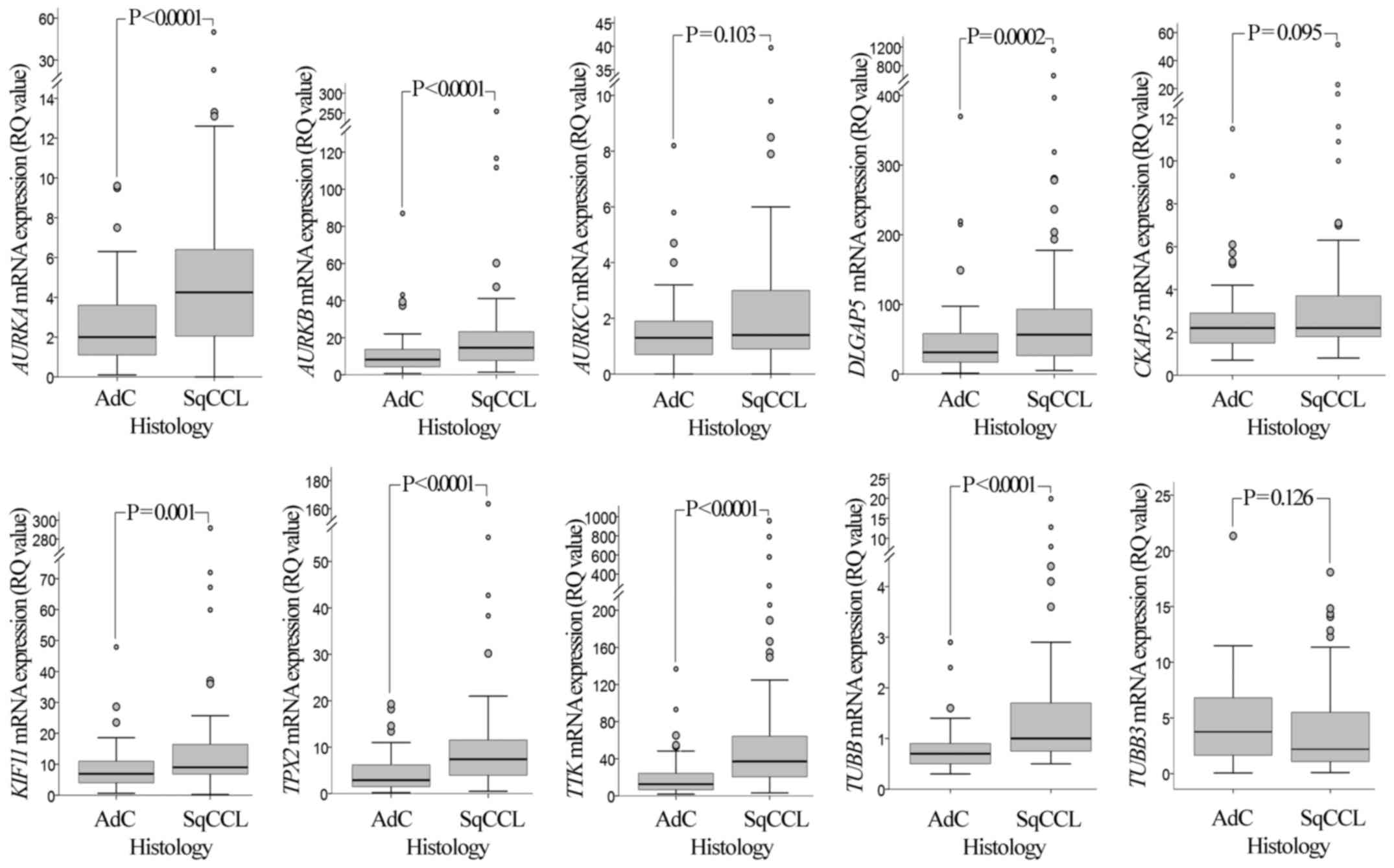 AURKA mRNA expression is an independent predictor of poor