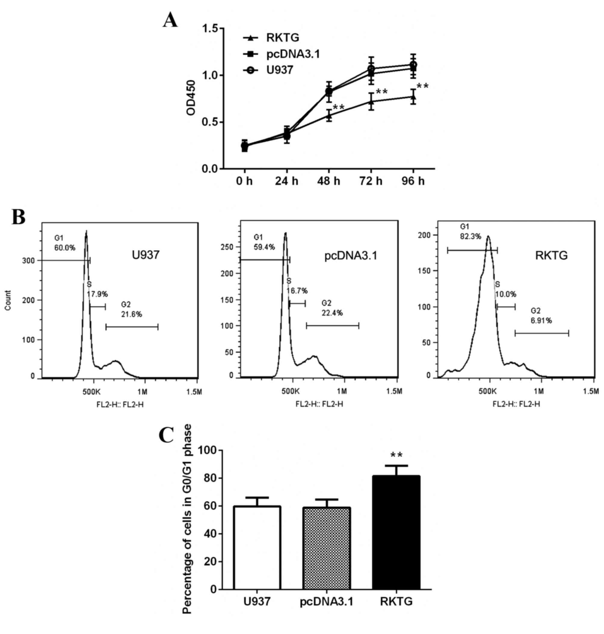 Tamoxifen Inhibits Nerve Growth Factor-induced