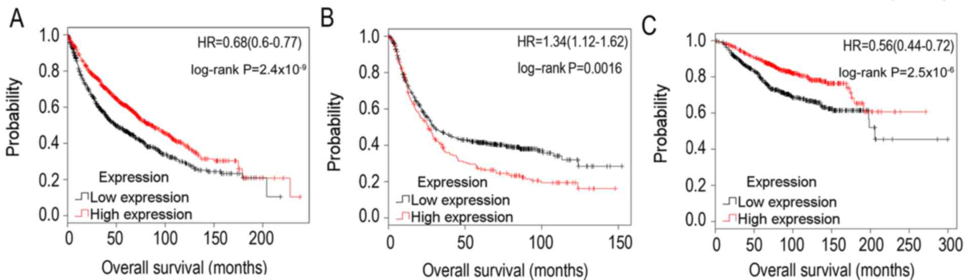 Associations of tumor suppressor SPARCL1 with cancer progression and