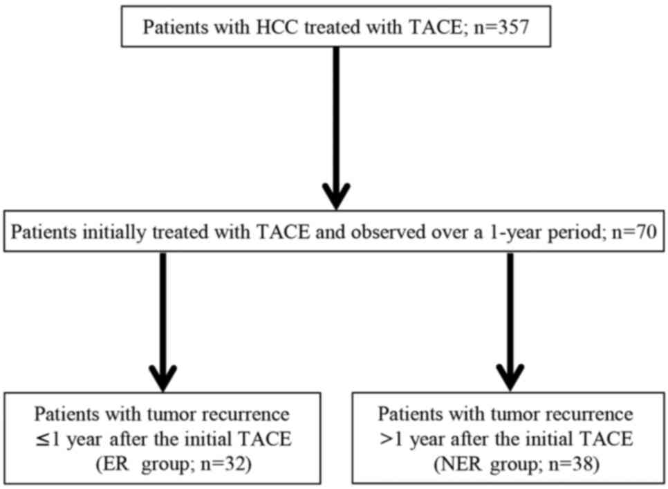 Predisposing Factors For Hepatocellular Carcinoma Recurrence Following Initial Remission After Transcatheter Arterial Chemoembolization