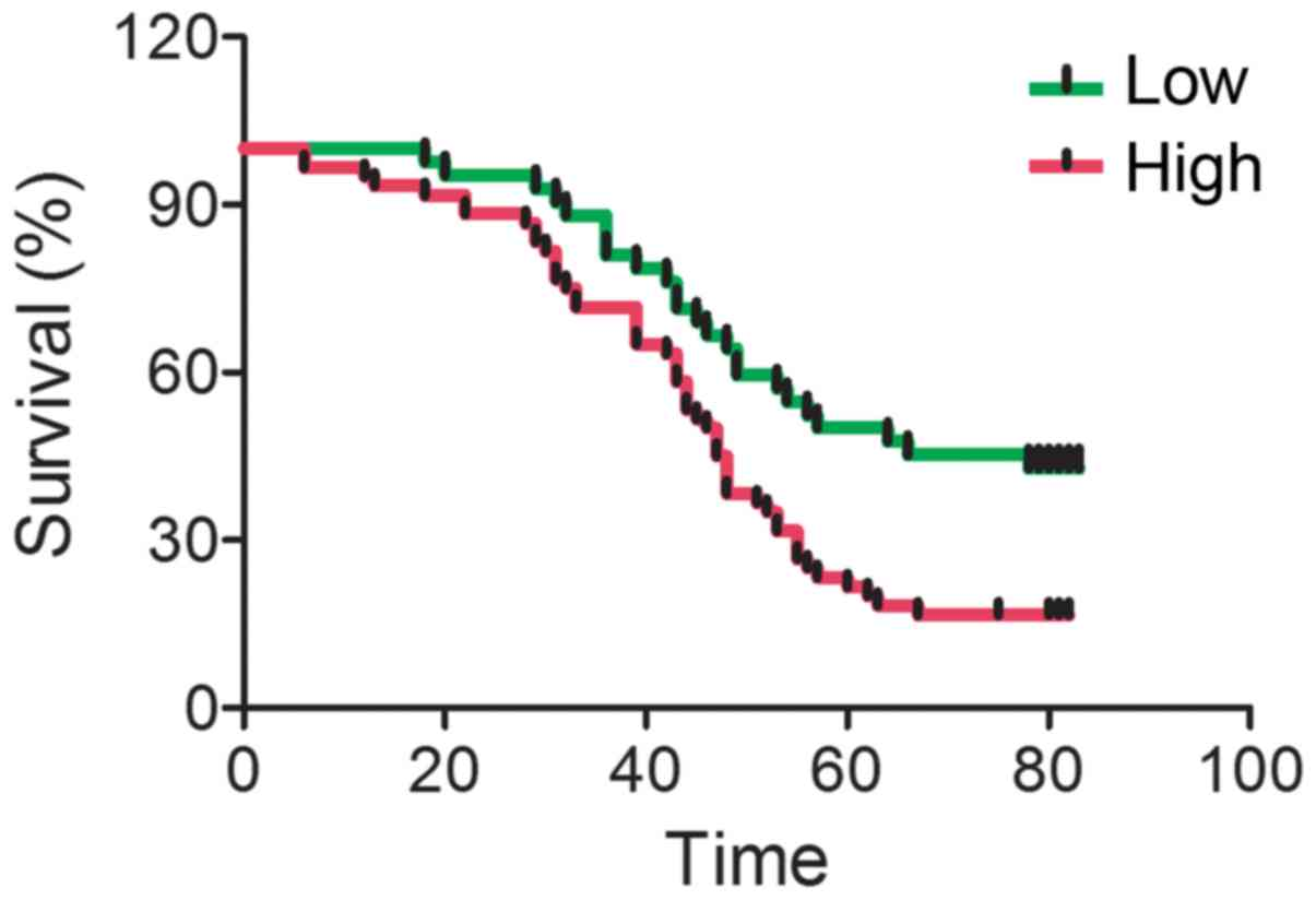 IGFBP‑4 expression is adversely associated with lung cancer