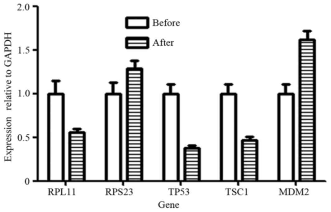 Alterations in expression levels of genes in p53‑related