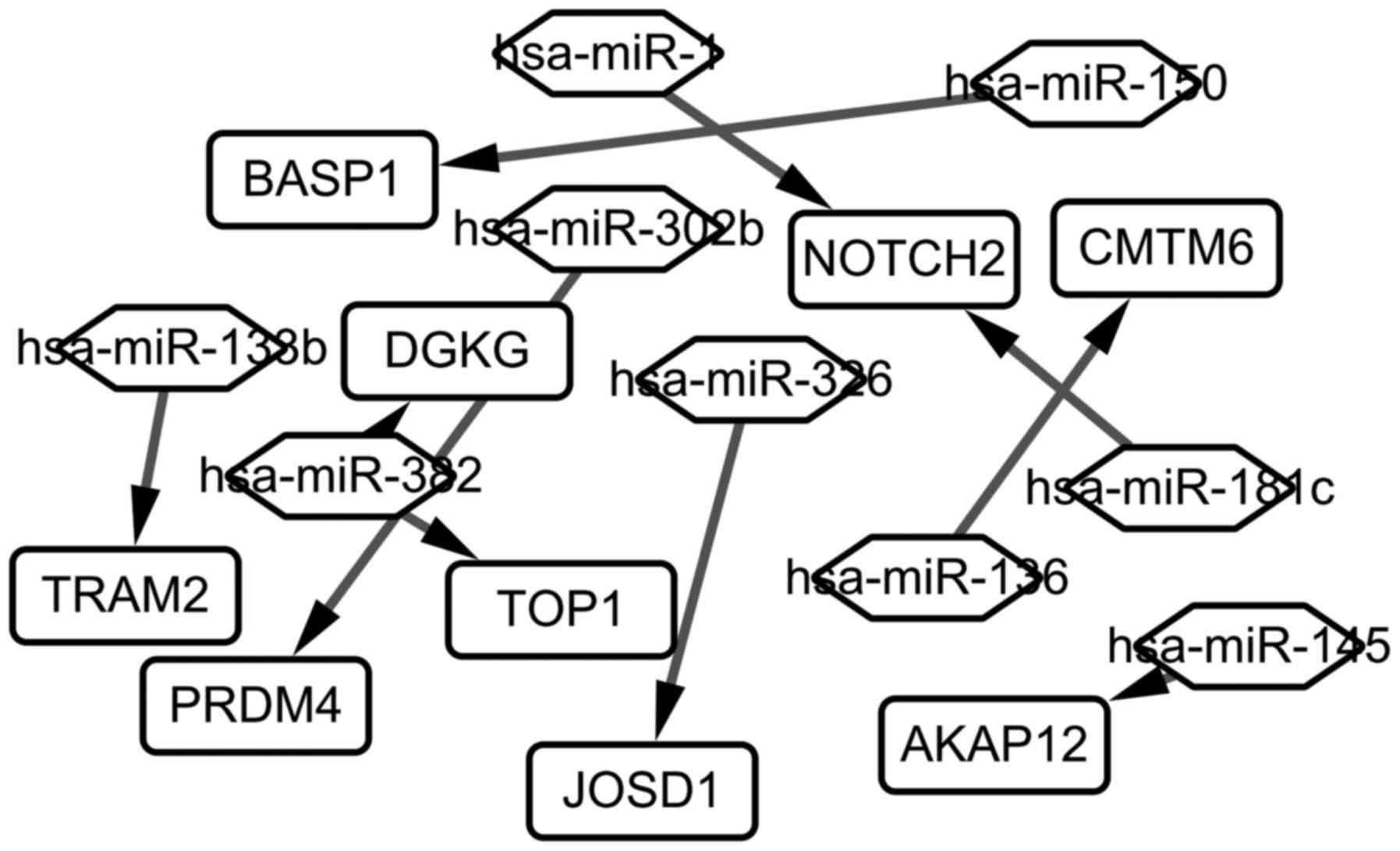 Identification of key miRNA‑gene pairs in chronic lymphocytic