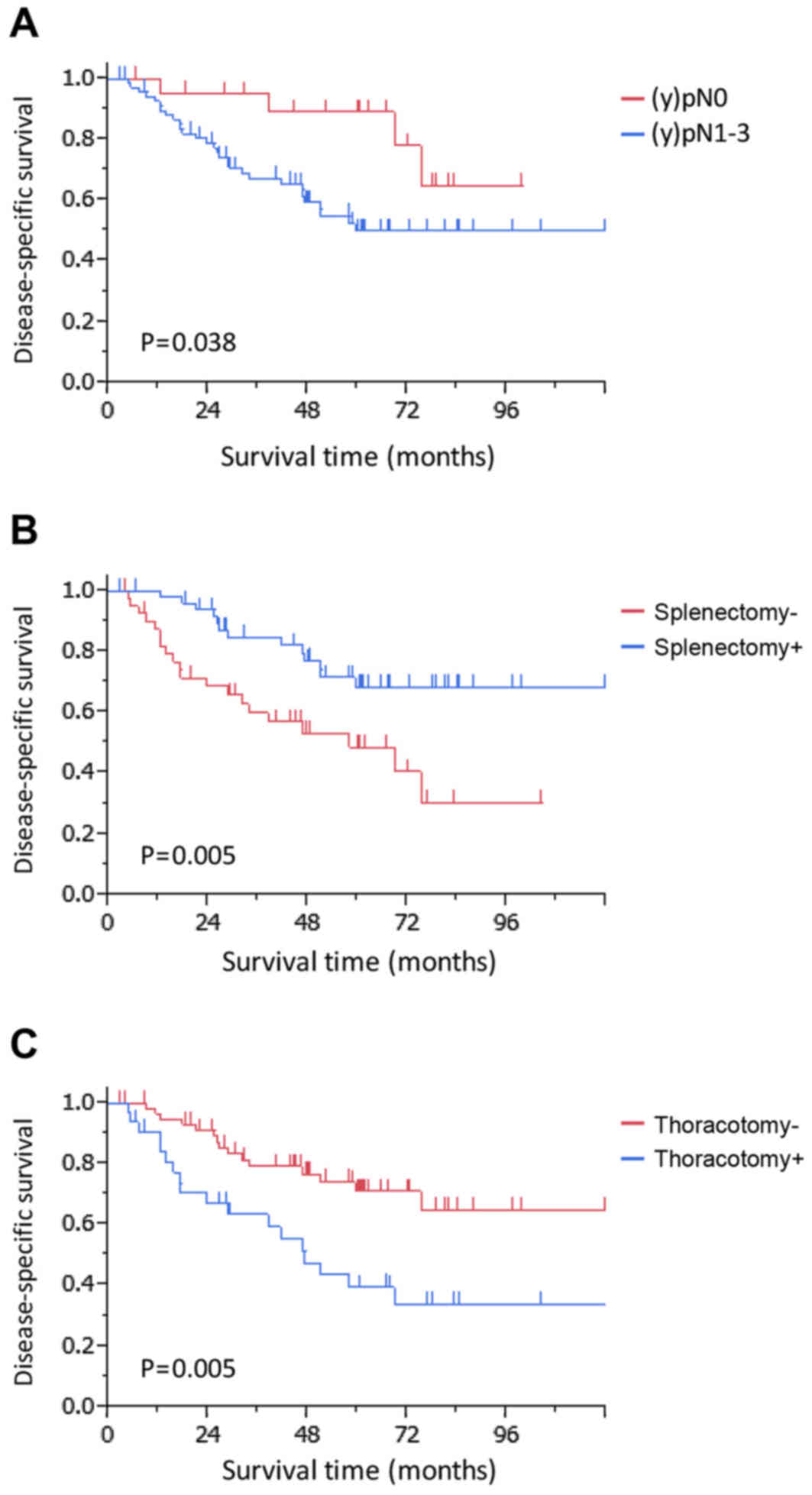 Disease Specific Survival Rates According To The Independent Prognostic Factors Namely A Presence Of Tumors Clified As Y Pn B Performance