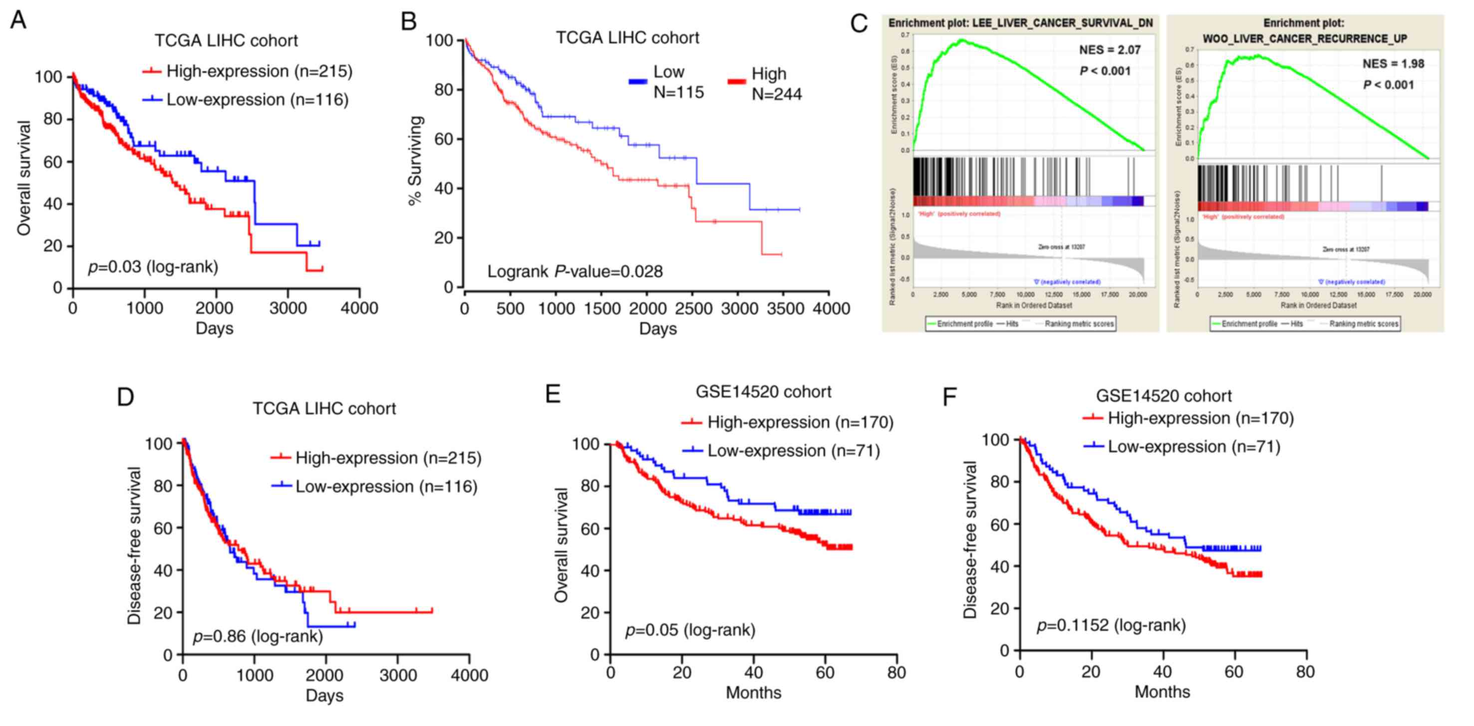 d64f9d8e1 Figure 4. Correlation between MED15 expression and survival of patients  with HCC in the TCGA-LIHC and GSE14520 cohorts. (A) Reduced OS time was  detected for ...