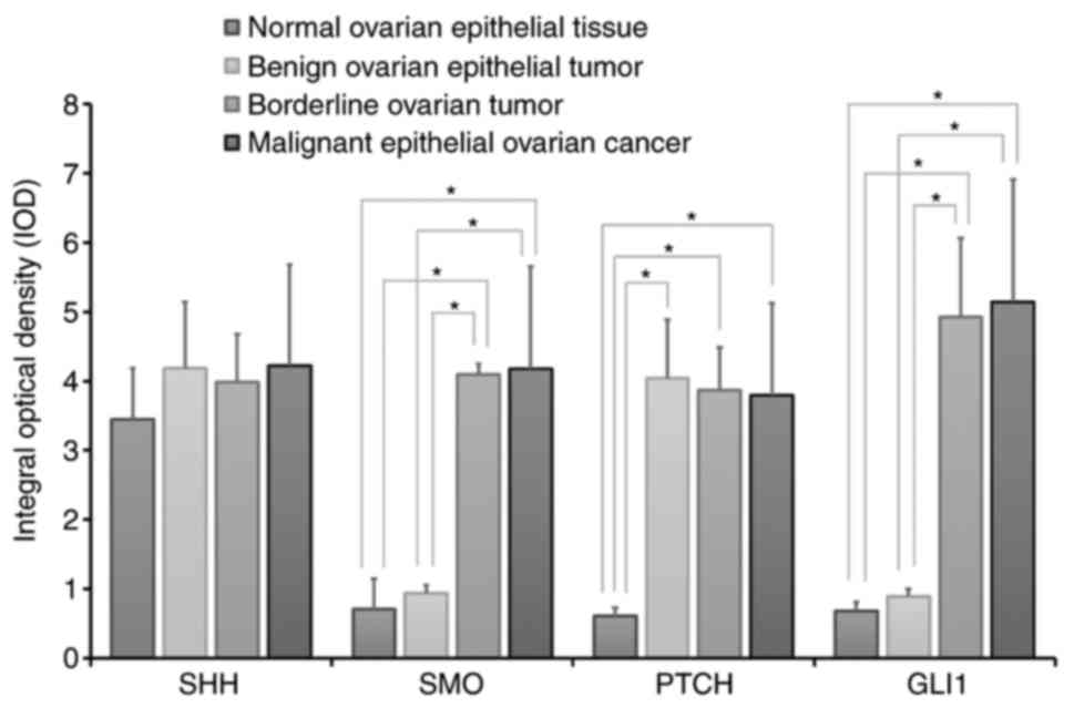 Activation Of Hedgehog Signaling And Its Association With Cisplatin Resistance In Ovarian Epithelial Tumors