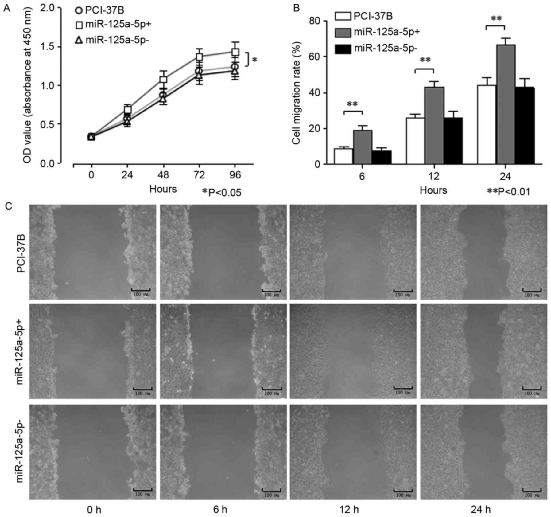 Overexpression of hsa‑miR‑125a‑5p enhances proliferation migration