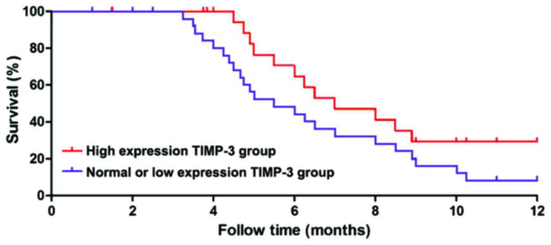 the correlation between cancerous organs and the length of patient survival time following diagnosis Patients diagnosed with a crc between 2011 and 2014, the following were  time to diagnosis and mortality in  cancer and patient survival:.