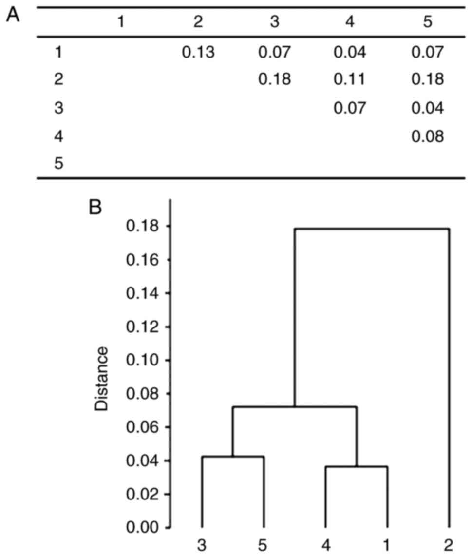 ABO blood group polymorphism has an impact on prostate
