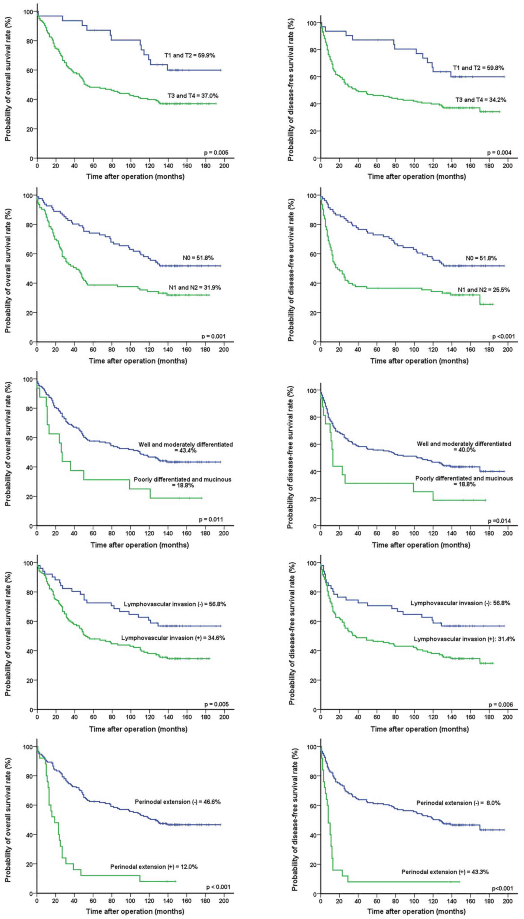 Prognostic Impact Of Programmed Cell Death Ligand 1 Expression On Long Term Oncologic Outcomes In Colorectal Cancer