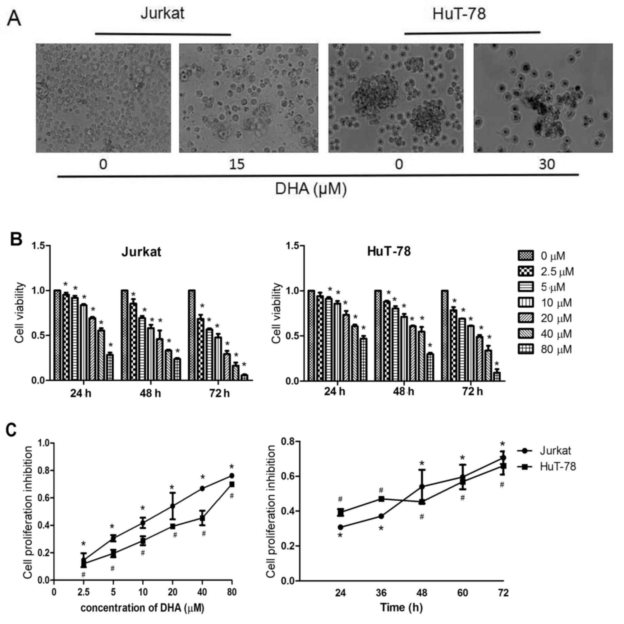 Dihydroartemisinin triggers c‑Myc proteolysis and inhibits