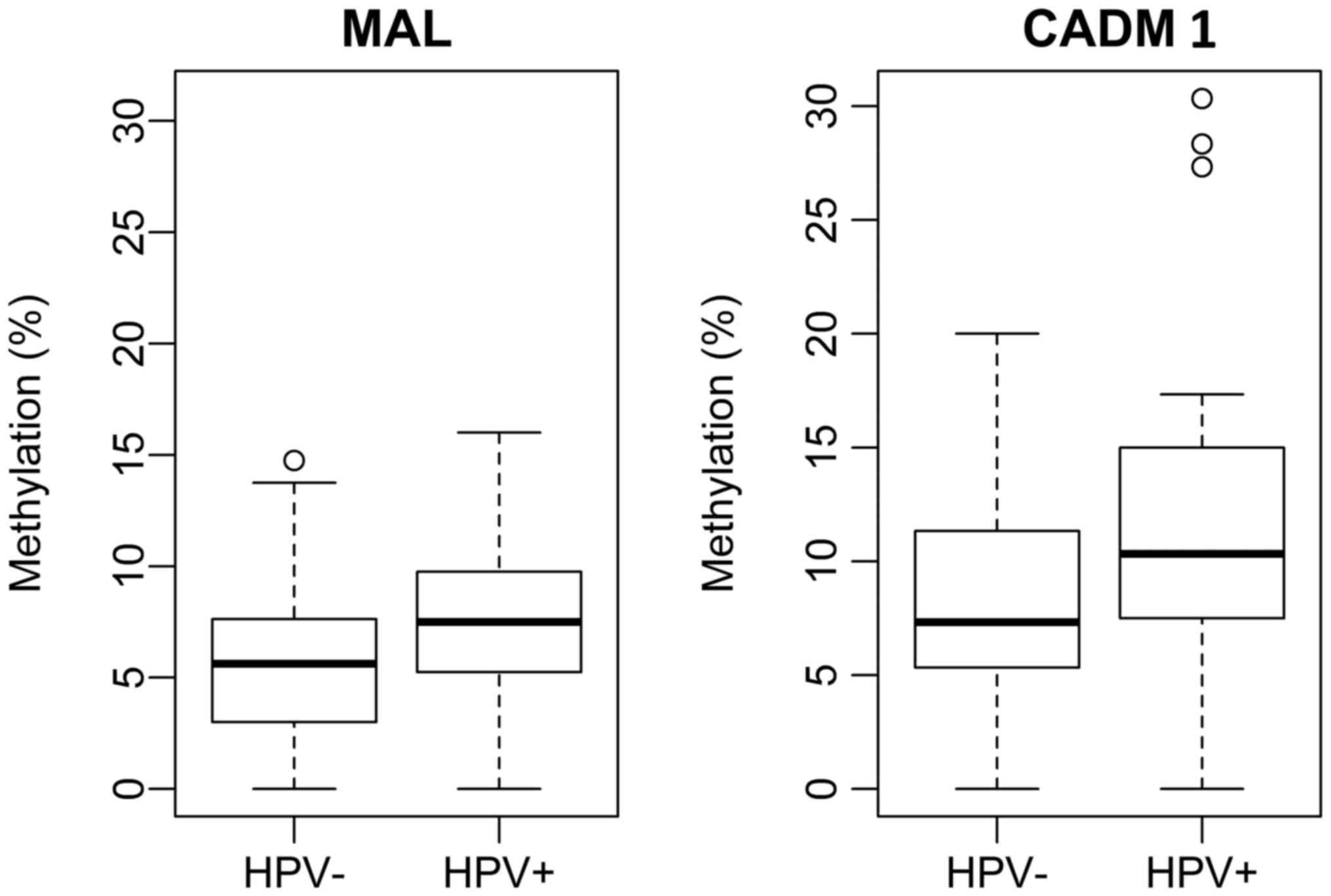 Methylation of CADM1 and MAL together with HPV status in cytological