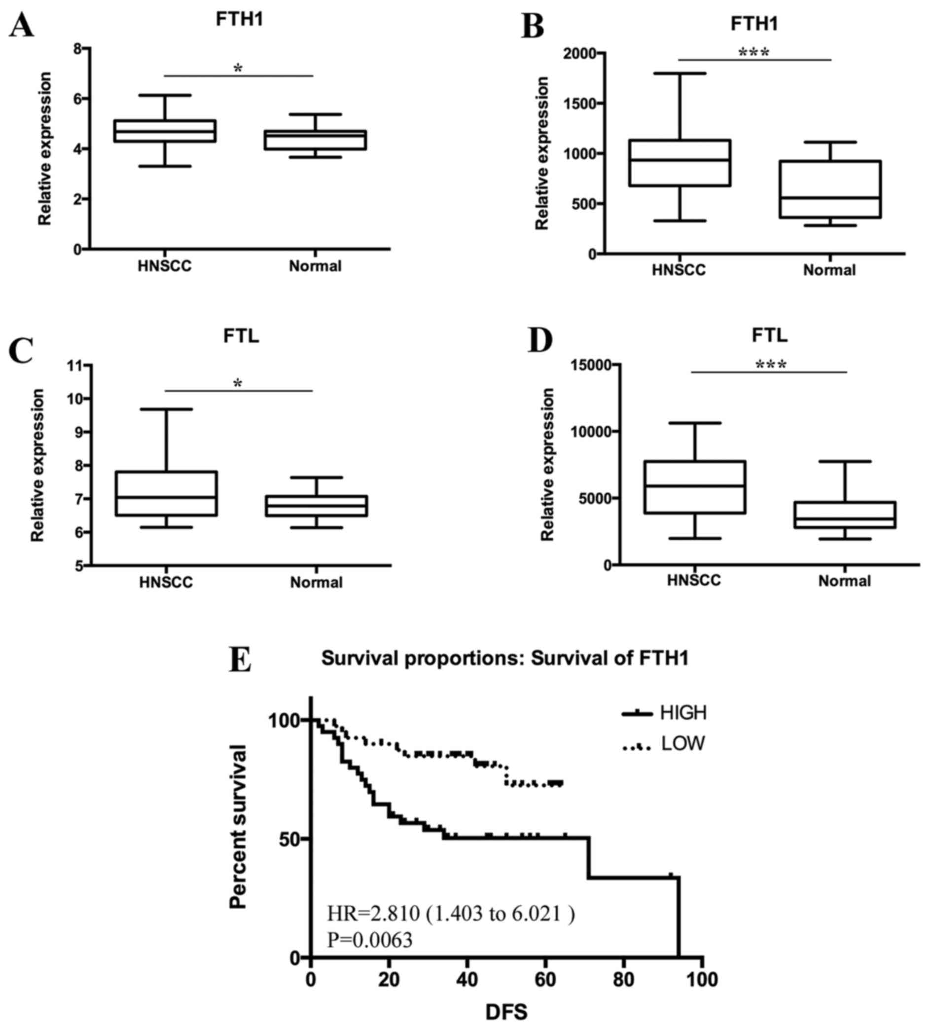 Ferritin: A potential serum marker for lymph node metastasis