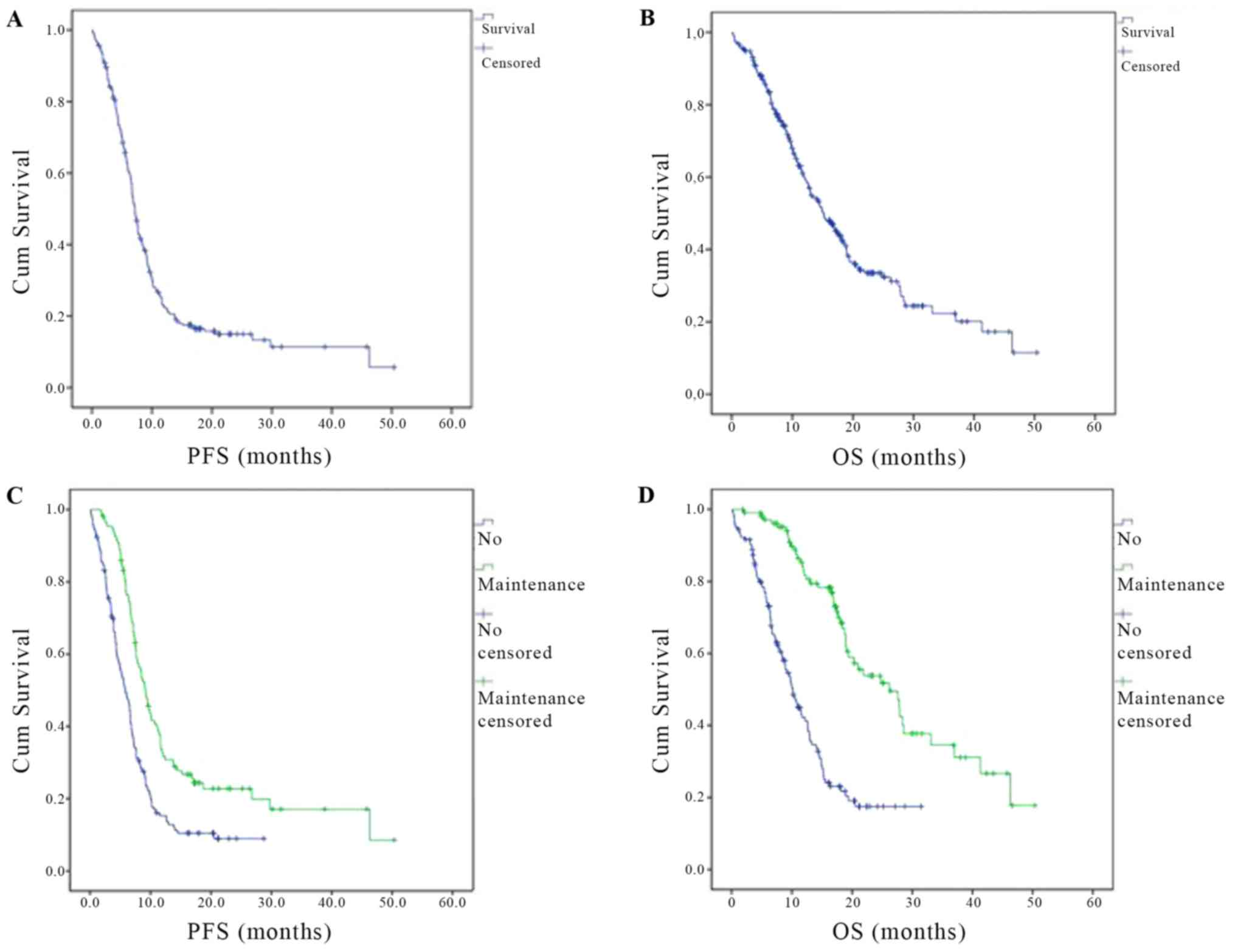 The Efficacy And Safety Of Bevacizumab In Addition To Platinum Based Chemotherapy For The First Line Treatment Of Patients With Advanced Nonsquamous Non Small Cell Lung Cancer Final Results Of Avalanche An Observational Cohort Study