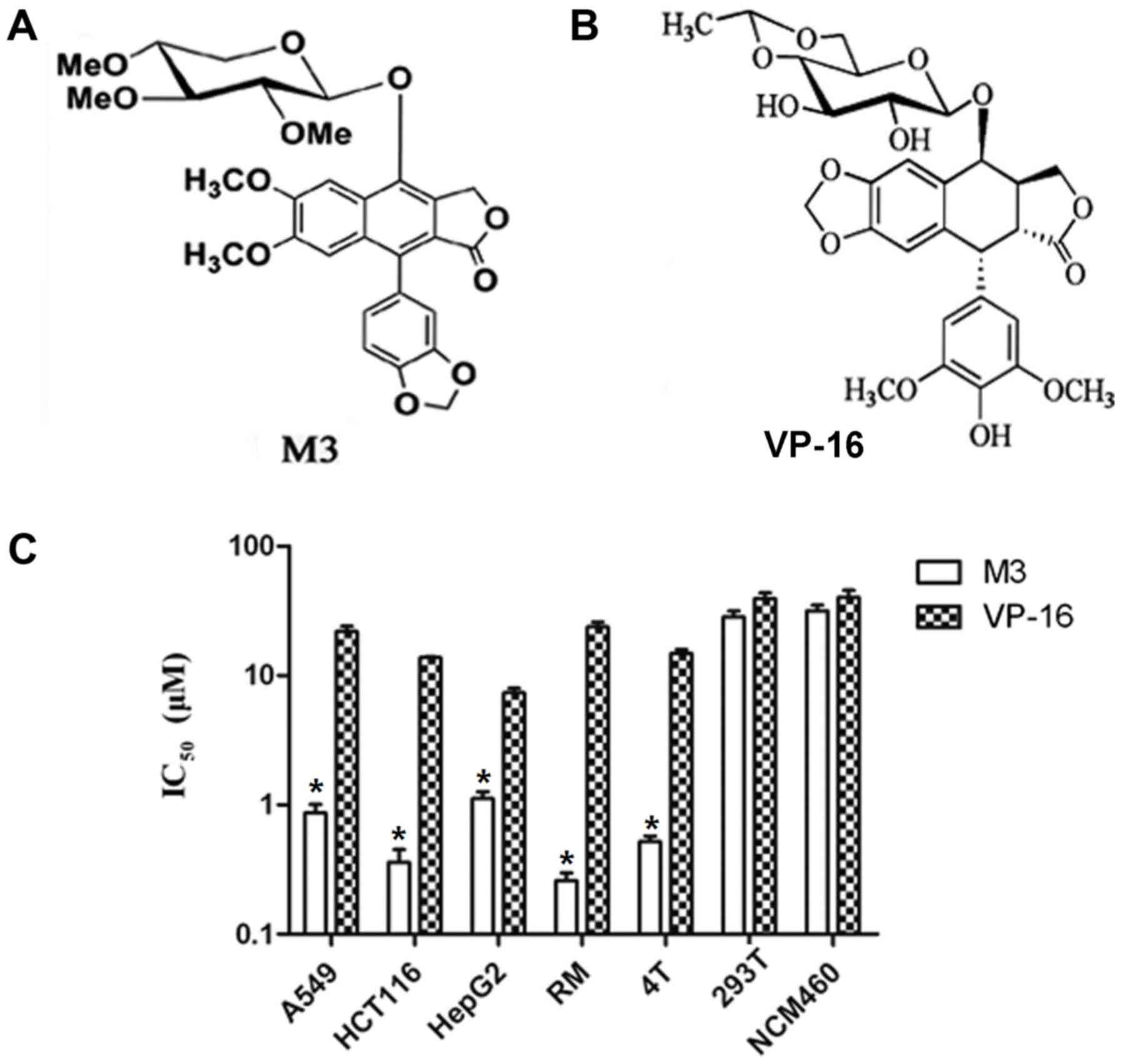M3, a natural lignan xyloside, exhibits potent anticancer activity