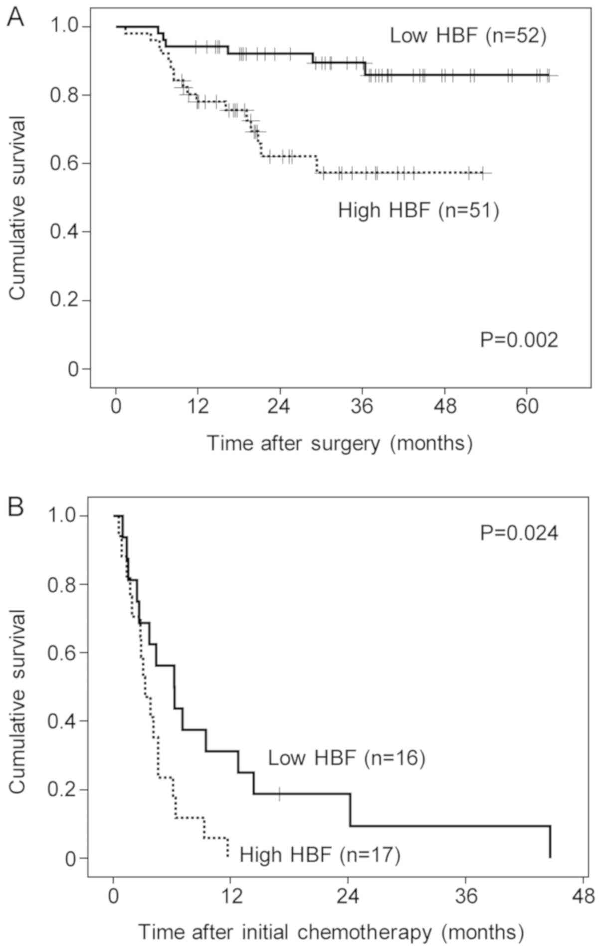 Hepatic Blood Flow By Perfusion Computed Tomography As An Imaging Biomarker For Patients With Gastric Cancer