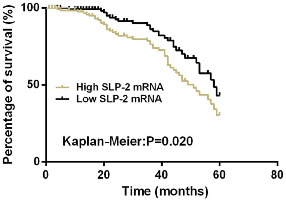Expression And Clinical Significance Of Slp 2 In Ovarian Tumors