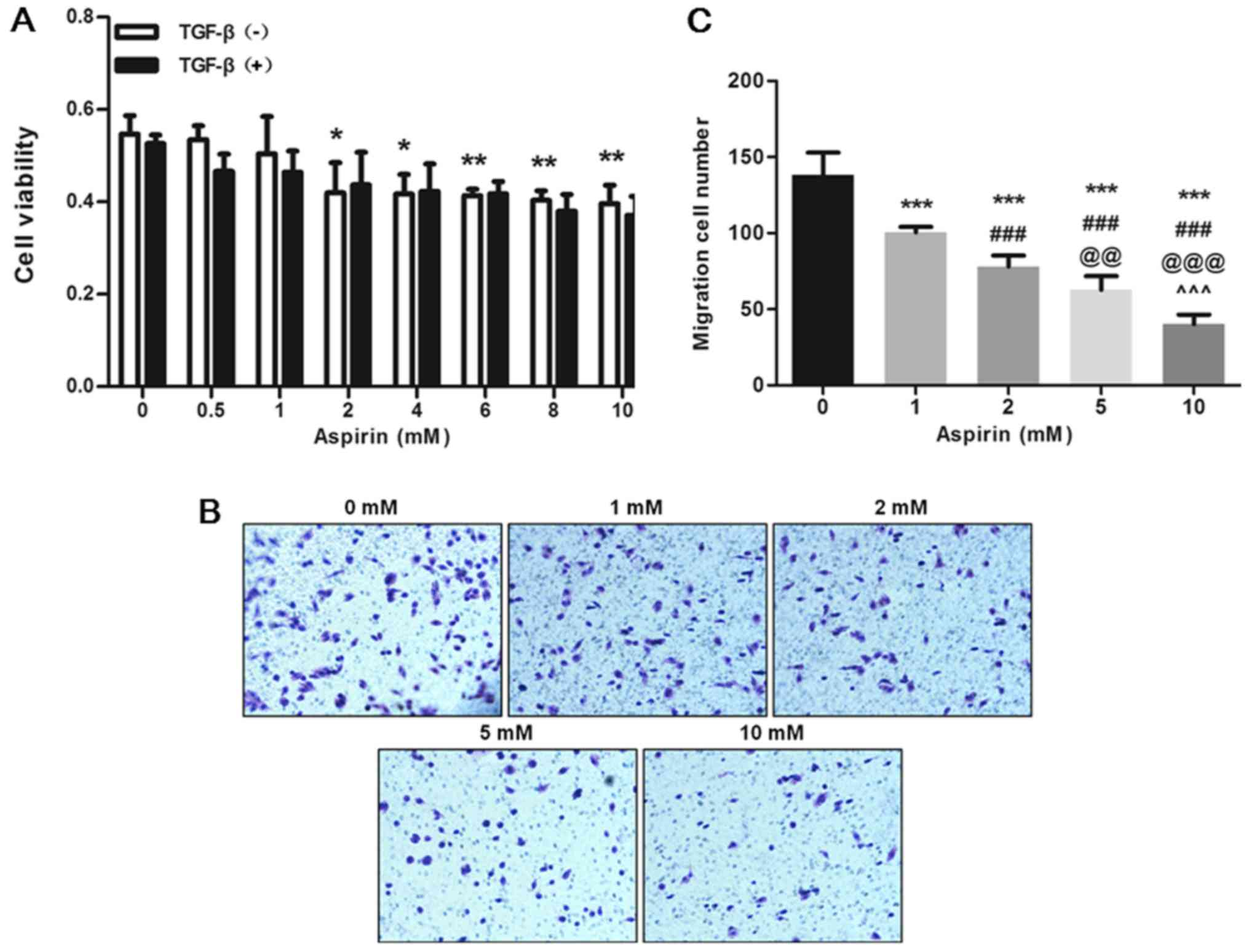 Aspirin Inhibits Colon Cancer Cell Line Migration Through Regulating Epithelial Mesenchymal Transition Via Wnt Signaling