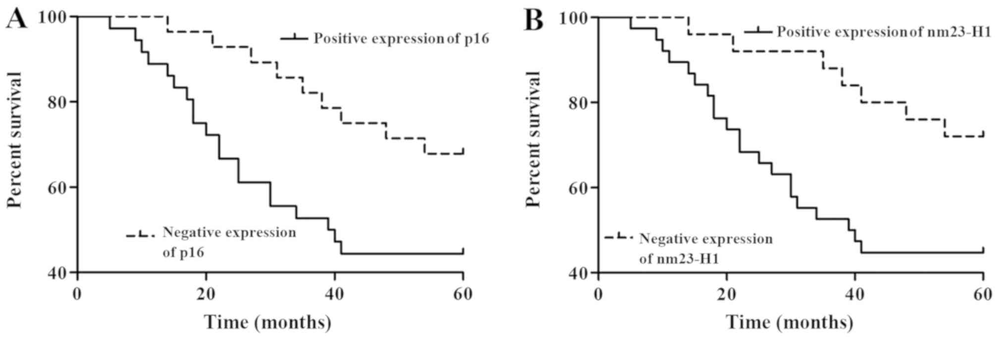 Correlation of p16 and nm23-H1 expression levels with