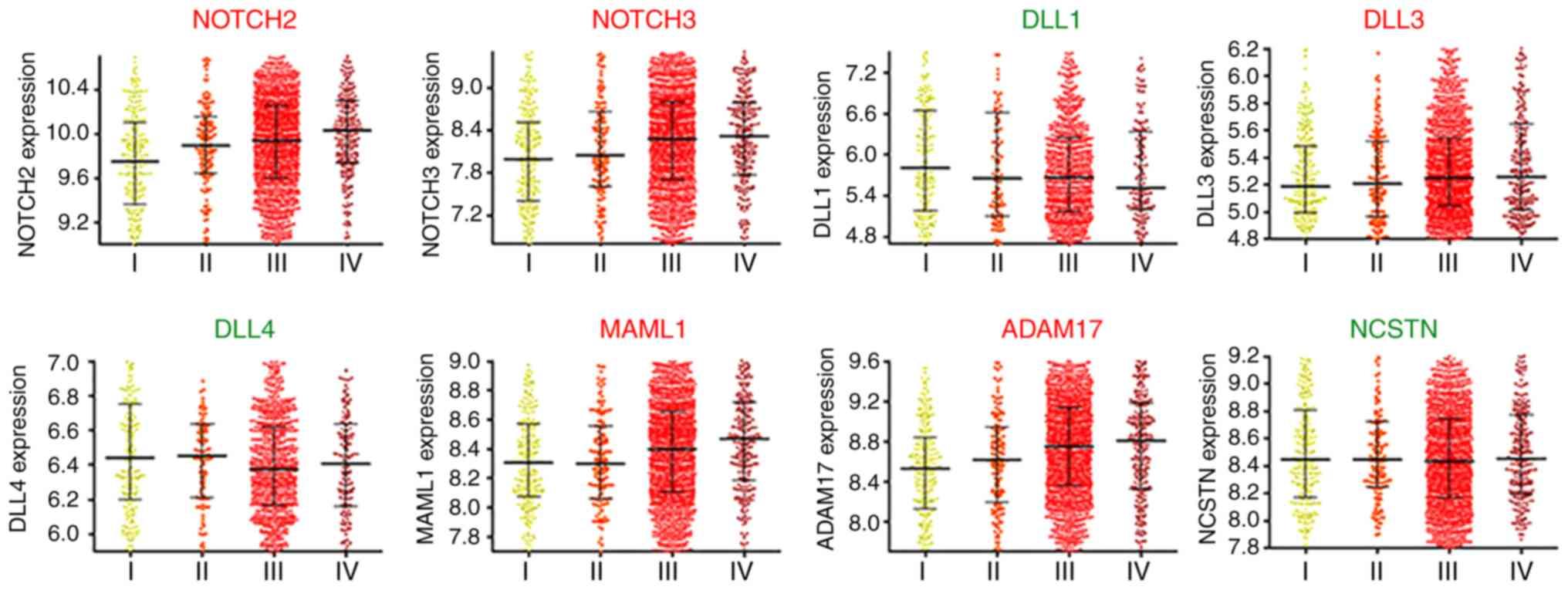 Notch2 Notch3 Dll3 Maml1 Adam17 Signaling Network Is Associated With Ovarian Cancer