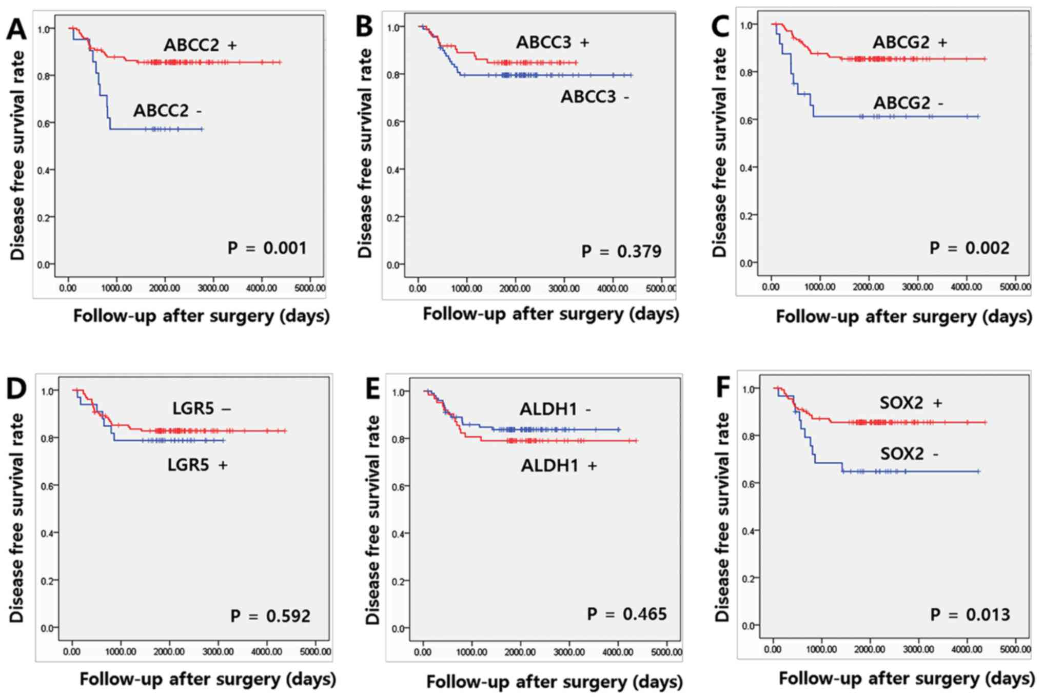 Prognostic Implication Of Abc Transporters And Cancer Stem Cell Markers In Patients With Stage Iii Colon Cancer Receiving Adjuvant Folfox 4 Chemotherapy