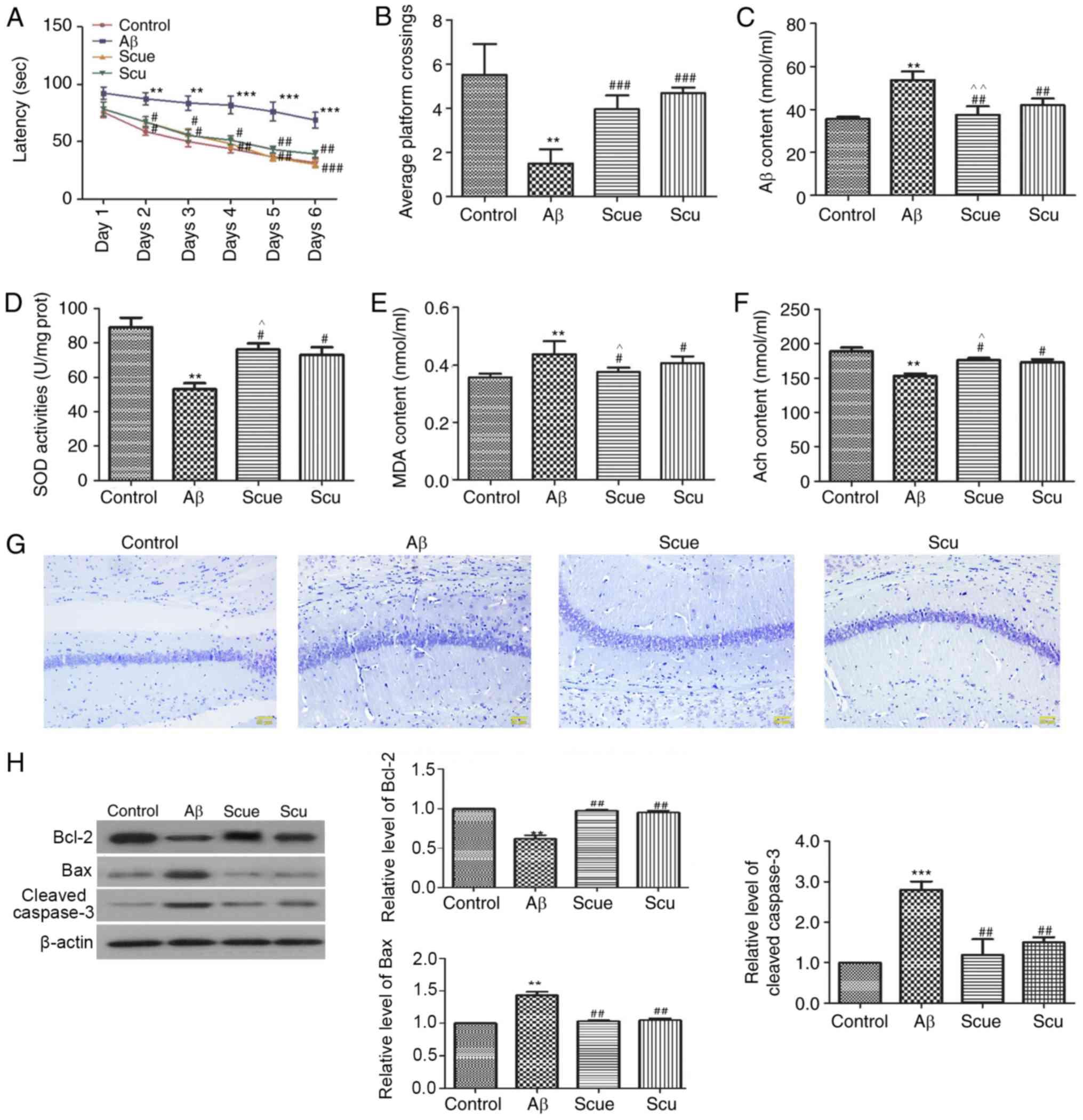 Scutellarein suppresses Aβ‑induced memory impairment via inhibition