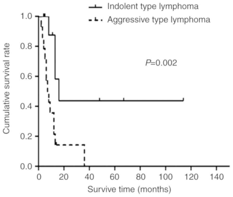non hodgkin lymphoma types