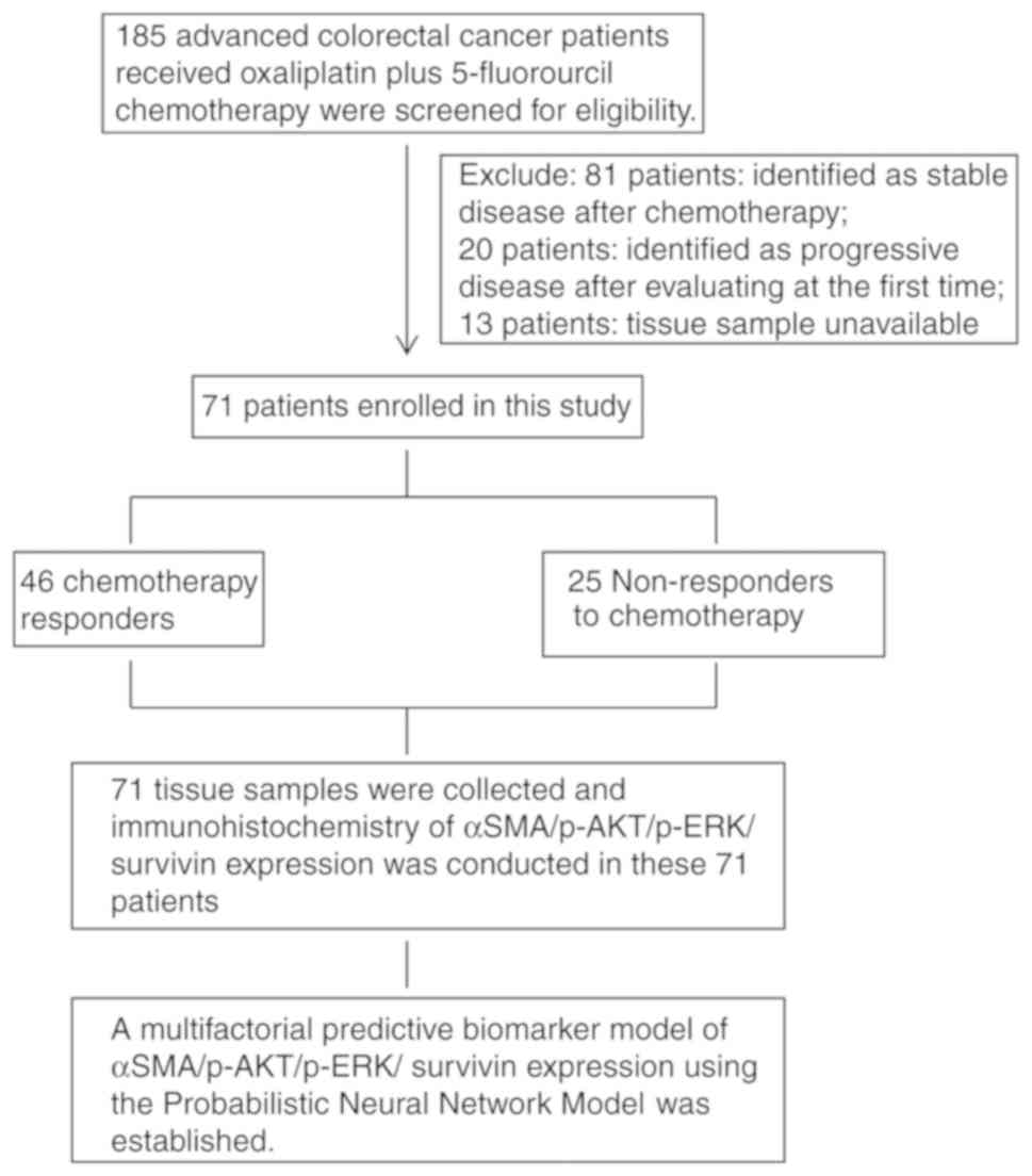 Response Prediction To Oxaliplatin Plus 5 Fluorouracil Chemotherapy In Patients With Colorectal Cancer Using A Four Protein Immunohistochemical Model