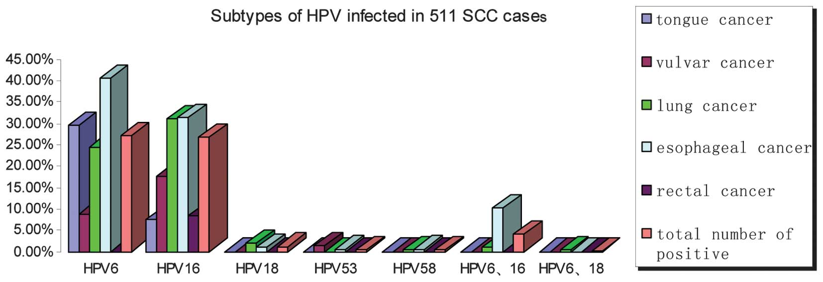 HPV genotypes in paraffin sections of non-cervical squamous
