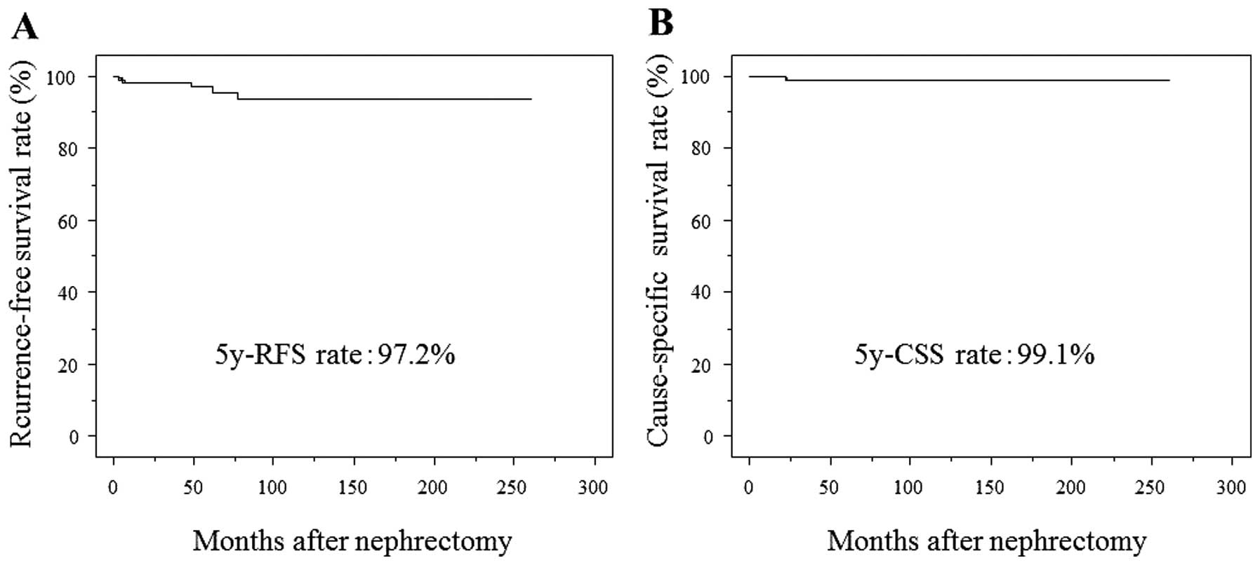 Tumor Necrosis Is A Strong Predictor For Recurrence In Patients With Pathological T1a Renal Cell Carcinoma