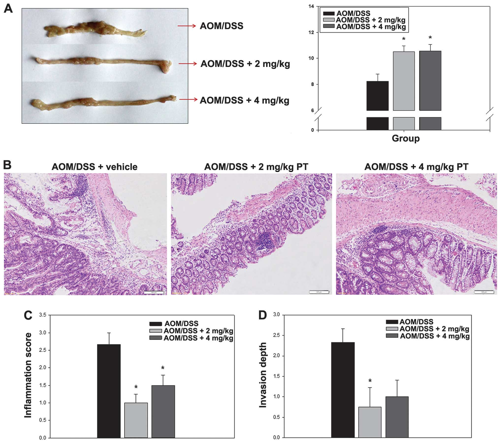 Parthenolide induces apoptosis in colitis-associated colon cancer ...