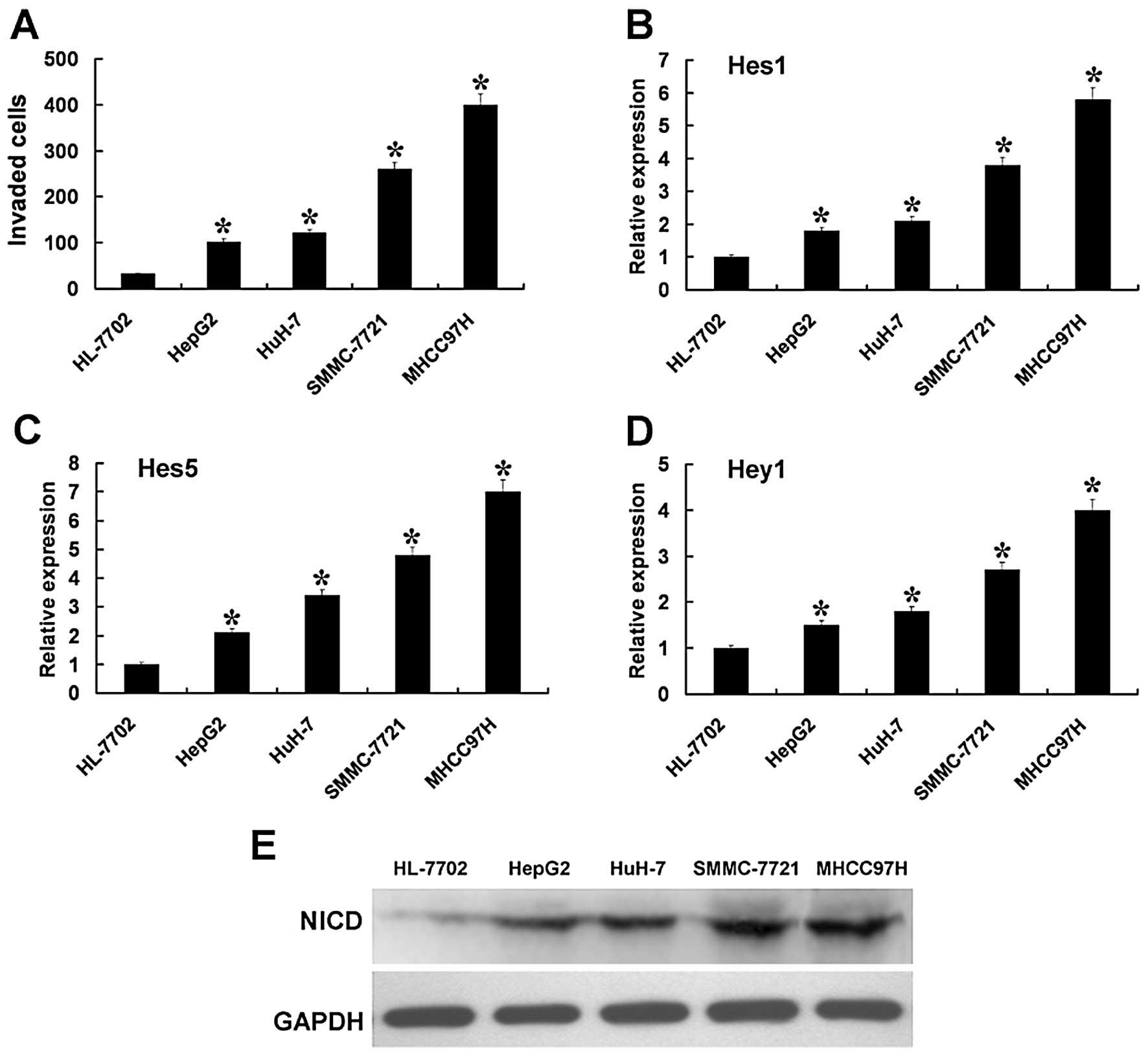 Notch Pathway Inhibition Using PF-03084014, a γ-Secretase