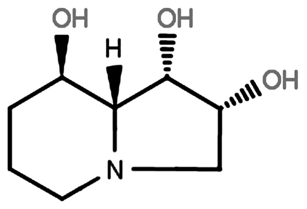 Swainsonine Inhibits Growth And Potentiates The Cytotoxic Effect Of
