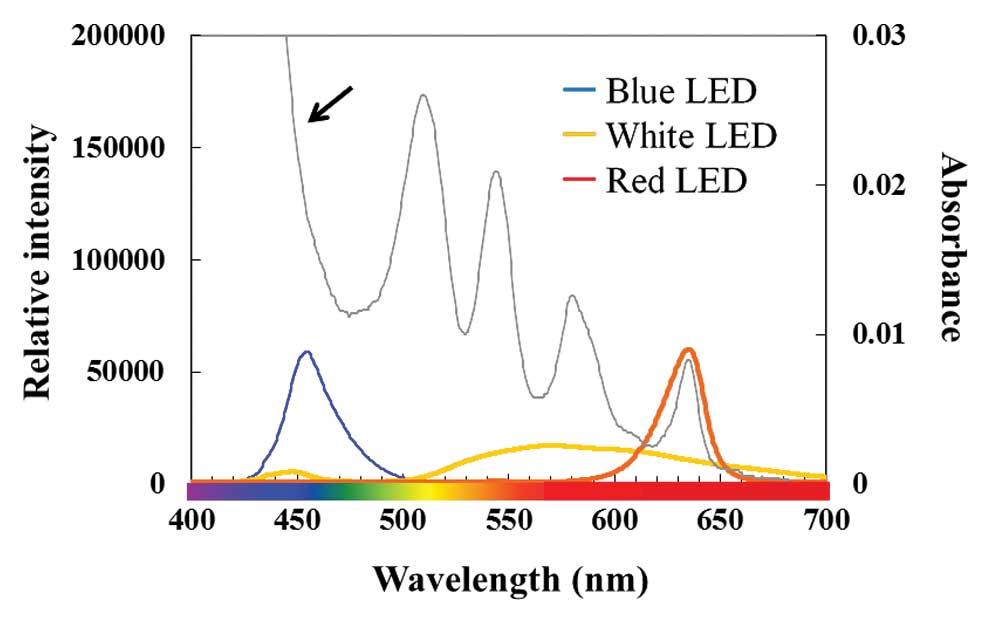 Efficacy Of 5 Aminolevulinic Acid Mediated Photodynamic